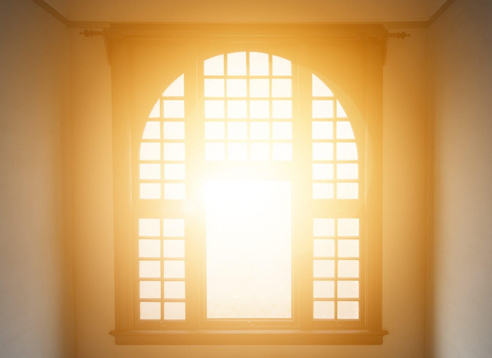 fönsterputs
